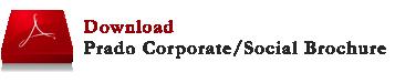Download the Corporate Brochure